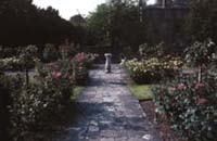 John Appleby Rose Garden